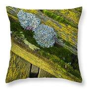 Lichen On Wood. Throw Pillow