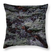 Lichen Texture Throw Pillow