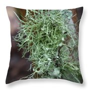 Lichens 6 Throw Pillow