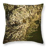 Lichens In Oregon Throw Pillow