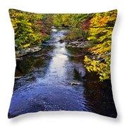 Lidia's Hidden Creek Throw Pillow