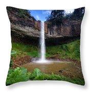 Lieng Nung Waterfall Throw Pillow