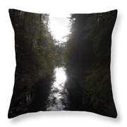 Liesijoki 1 Throw Pillow