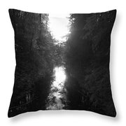 Liesijoki 2 Throw Pillow
