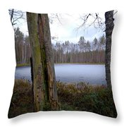 Liesilampi 2 Throw Pillow