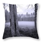 Liesilampi 4 Throw Pillow