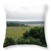 Lieutenant Island Marsh Throw Pillow