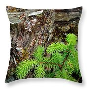 Life After Death Throw Pillow