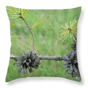 Life Cycle Throw Pillow