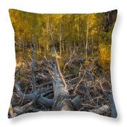 Life-death-and-renewal Throw Pillow