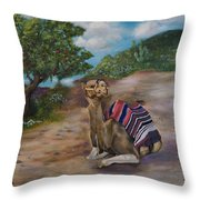 Life In Israel Throw Pillow
