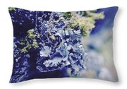 Life In The Cloud Forest Throw Pillow