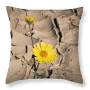Life In The Desert Throw Pillow