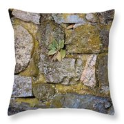 Life In The Wall Throw Pillow