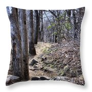 Life Is Not A Rocky Road... This Is... Throw Pillow