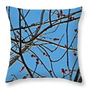 Life Is Sweet For Certain Throw Pillow