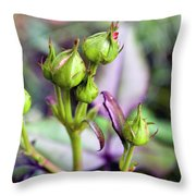 Life Is Abound Throw Pillow