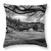 Life Leads Us Along Many Paths Throw Pillow