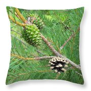 Life Moves On Throw Pillow