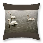 Life Of A Youngster. Throw Pillow