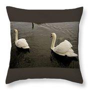 Life Of Swans. Throw Pillow