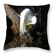 Life On The River Throw Pillow