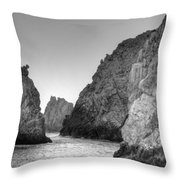 Life On The Rocks Throw Pillow