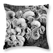 Life On The Rocks In Black And White Throw Pillow