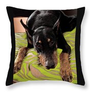 Life With A Purpose Throw Pillow