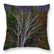 Life's A Birch No.1 Throw Pillow