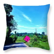 Life's Detour Throw Pillow