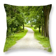 Life's Path Throw Pillow