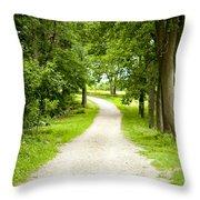 Life's Path Throw Pillow