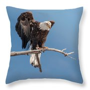 Lift Your Wings Throw Pillow