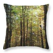 Light Among The Trees Vertical Throw Pillow