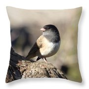 Light And Dark Of A Junco Throw Pillow