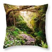 Light And Magic Throw Pillow