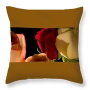 Light And Roses Throw Pillow