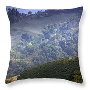 Light And Shade Throw Pillow