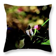 Light And Shadow In The Garden Throw Pillow