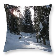 Light And Shadow On A Snowy Landscape Throw Pillow