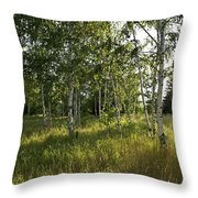 Light And Shadows Throw Pillow