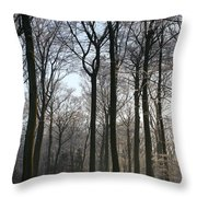 Light And Swadows Throw Pillow