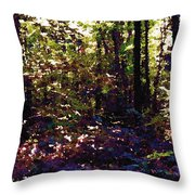 Light And Trees Wcsa  Throw Pillow
