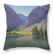 Light At Parker Lake Throw Pillow