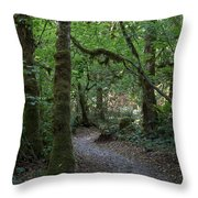 Light At The End Of The Path Throw Pillow