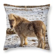Light Brown Pony Throw Pillow