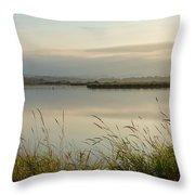Light Falling Softly On The Marsh Throw Pillow