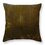 Light In Autumn Throw Pillow