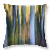 Light In Evening Forest Throw Pillow